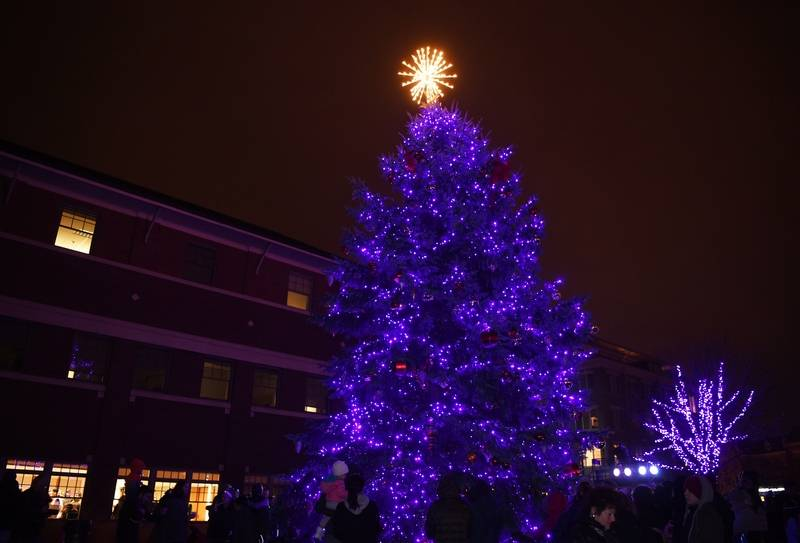 Mount Prospect Tree Lighting and Christkindlmarket 2017